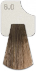 WIZOUT HAIR COLOR  NATURAL 6.0