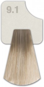 WIZOUT HAIR COLOR ASH 9.1