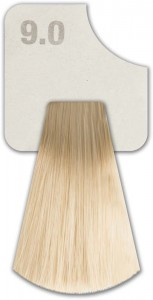 WIZOUT HAIR COLOR  NATURAL 9.0