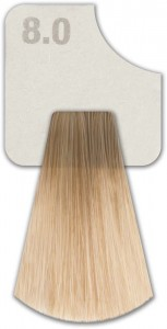 WIZOUT HAIR COLOR  NATURAL 8.0