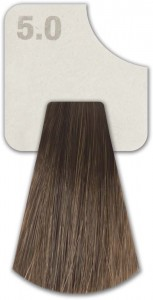 WIZOUT HAIR COLOR  NATURAL 5.0