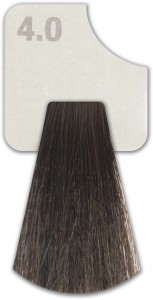 WIZOUT HAIR COLOR  NATURAL 4.0