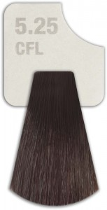 WIZOUT HAIR COLOR MIXED 5.25 CFL LIGHT DARK CHOCOLATE
