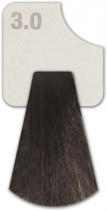 WIZOUT HAIR COLOR  NATURAL 3.0