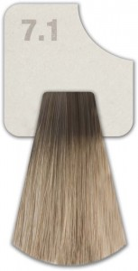 WIZOUT HAIR COLOR ASH 7.1
