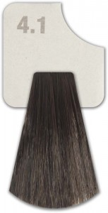WIZOUT HAIR COLOR ASH 4.1