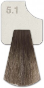 WIZOUT HAIR COLOR ASH 5.1