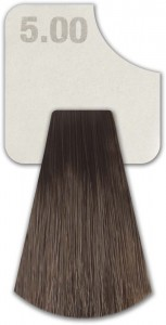 WIZOUT HAIR COLOR DEEP NATURALS 5.00