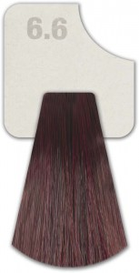 WIZOUT HAIR COLOR RED 6.6