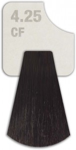WIZOUT HAIR COLOR MIXED 4.25 CF DARK CHOCOLATE