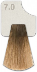 WIZOUT HAIR COLOR  NATURAL 7.0