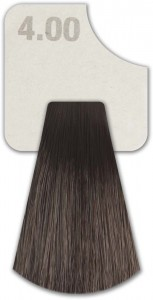 WIZOUT HAIR COLOR DEEP NATURALS 4.00